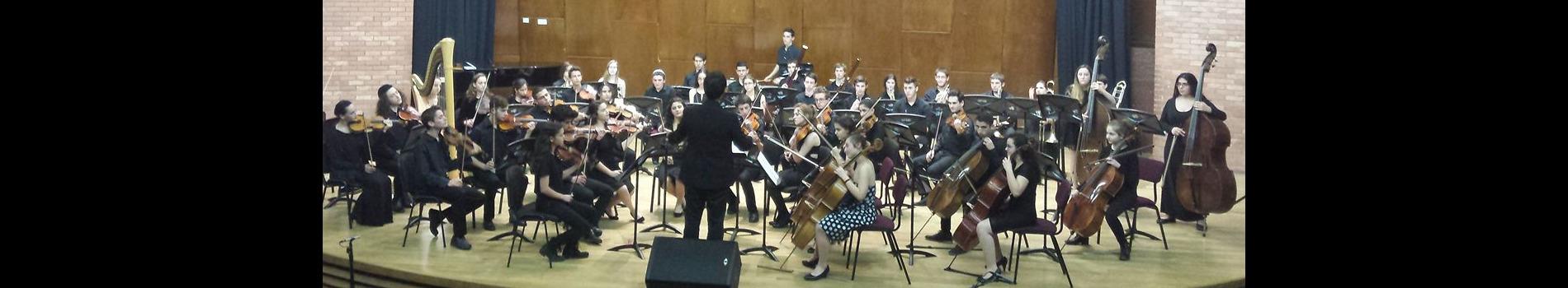 התזמורת הסימפונית היצוגית